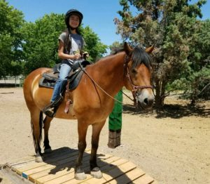 Centered Riding Clinic