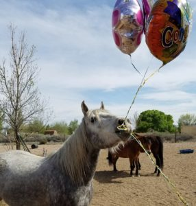 Acheron's 5th Birthday Party!!