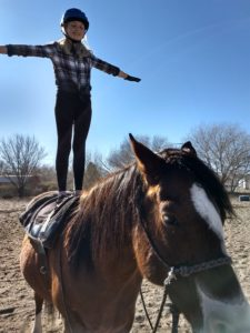 So you want to learn how to ride a horse?